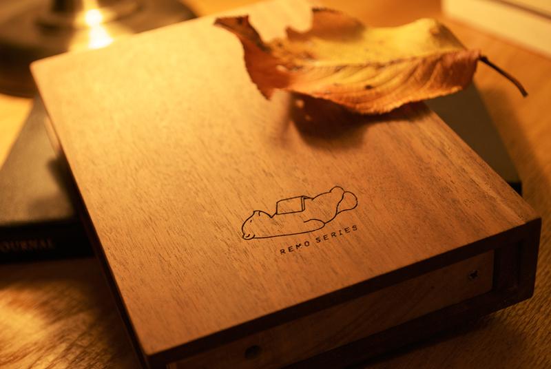 remo_books