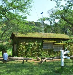木村崇人さんの「森ラジオ ステーション」