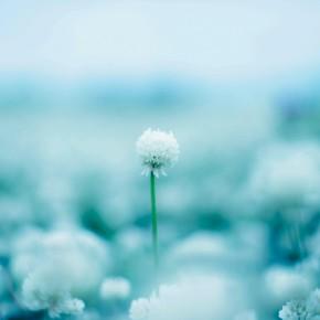 東日本大震災 追悼回向コンサート「海霧讃歎」