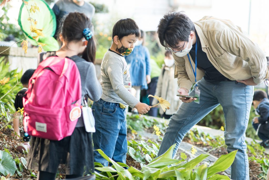 戸定ヶ丘歴史公園の自然や虫を観察しながら歩く参加者たち